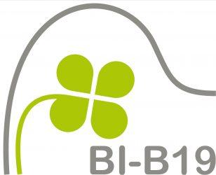 Bürgerinitiative B19